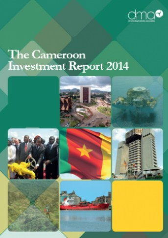 Investing in Cameroon 2014